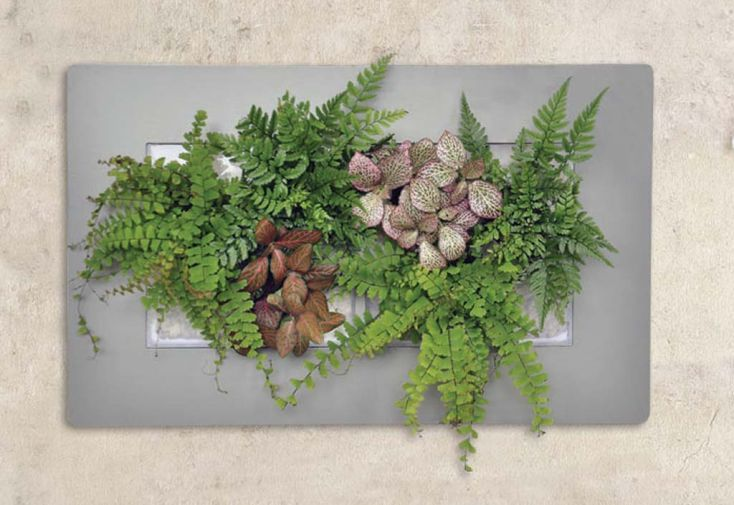 Cadre Végétal Mural Mathy Double 30x48cm Plusieurs Coloris