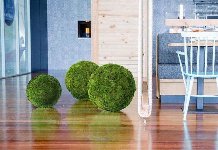 Plante Stabilisée Sphère Mousse Greenmood