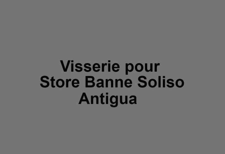 Visserie pour Store Banne Antigua Soliso