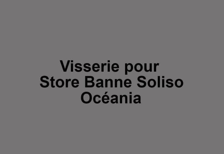 Visserie pour Store Banne Soliso Océania
