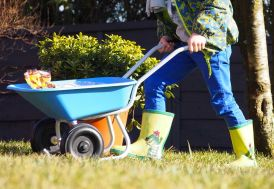 Brouette Mini pour Enfant 2 Roues Bleue