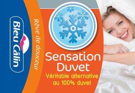 Couette Sensation Duvet 500 g/m² 140x200 - 200x200 - 220x240 - 240x260