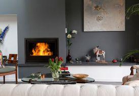 insert bouilleur double fonction : cheminée et producteur eau chaude sanitaire