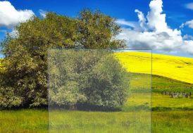 Verre Synthétique Transparent polystyrène 8mm - 100x50cm