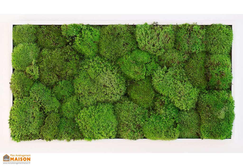 Tableau Végétal Mousse Boule Greenmood Kokoon